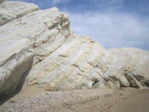 riserva foce del platani (143)
