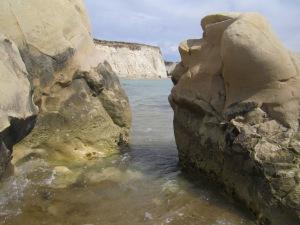 riserva foce del platani (147)