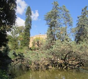 Villa d'Orleans